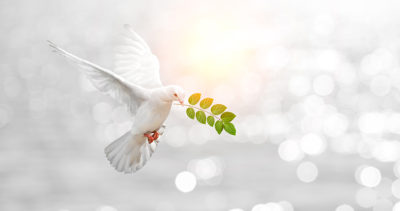 Gifts for the special person who meditates