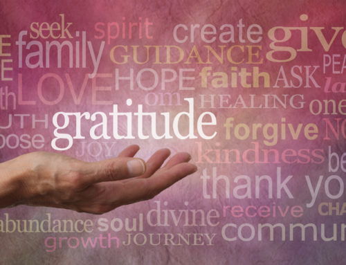Meditation on the Power of Gratitude